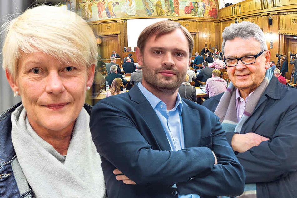 Petra Zais (59, Grüne), Alexander Dierks (29, CDU) und Roland Katzer (66, AfD).