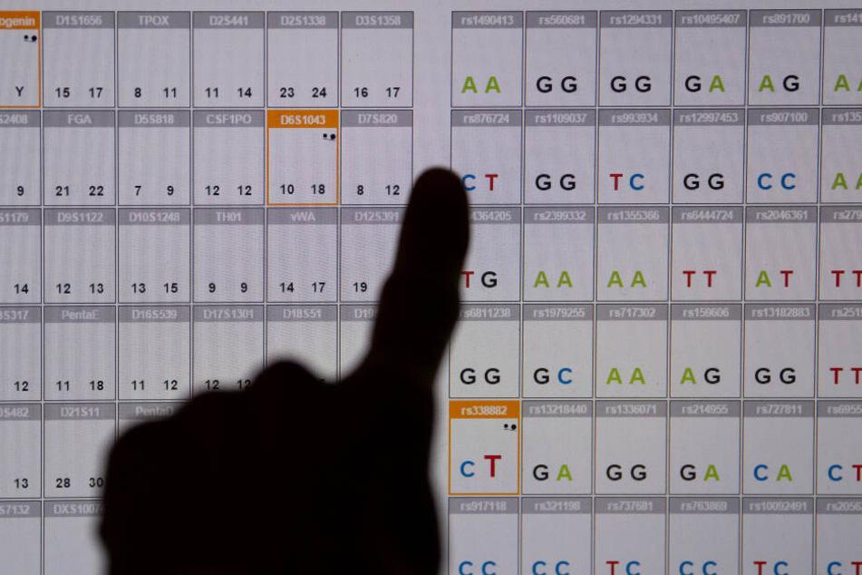 Das Ergebnis einer DNA-Sequenzanalyse (genetischer Fingerabdruck) ist im DNA-Labor des Bayerischen Landeskriminalamtes (LKA) auf einem Monitor zu sehen.