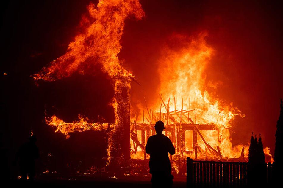 Starke Waldbrände bestimmten im November 2018 das Leben der Menschen in Kalifornien.