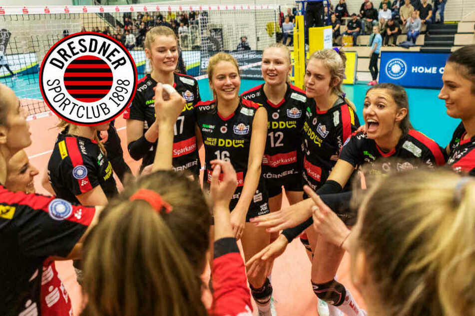 Dresdner SC will in Bacau den nächsten Sieg!
