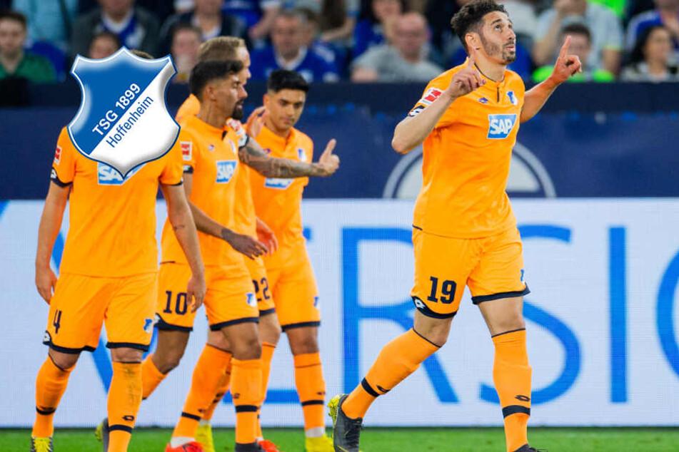 Hoffenheims Champions League-Jagd geht weiter: Jetzt kommen die Wölfe