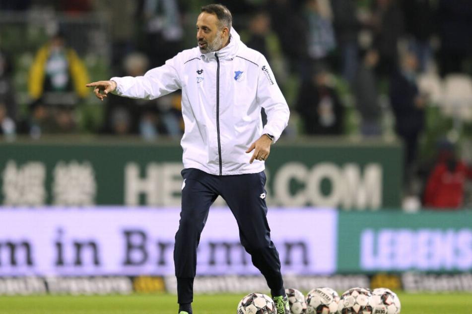Pellegrino Matarazzo kommt von der TSG zum VfB.