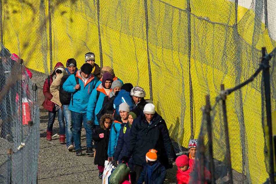 """Bei der """"mittleren Zuwanderung"""" würde sich die Zahl der Muslime in Europa verdoppeln."""
