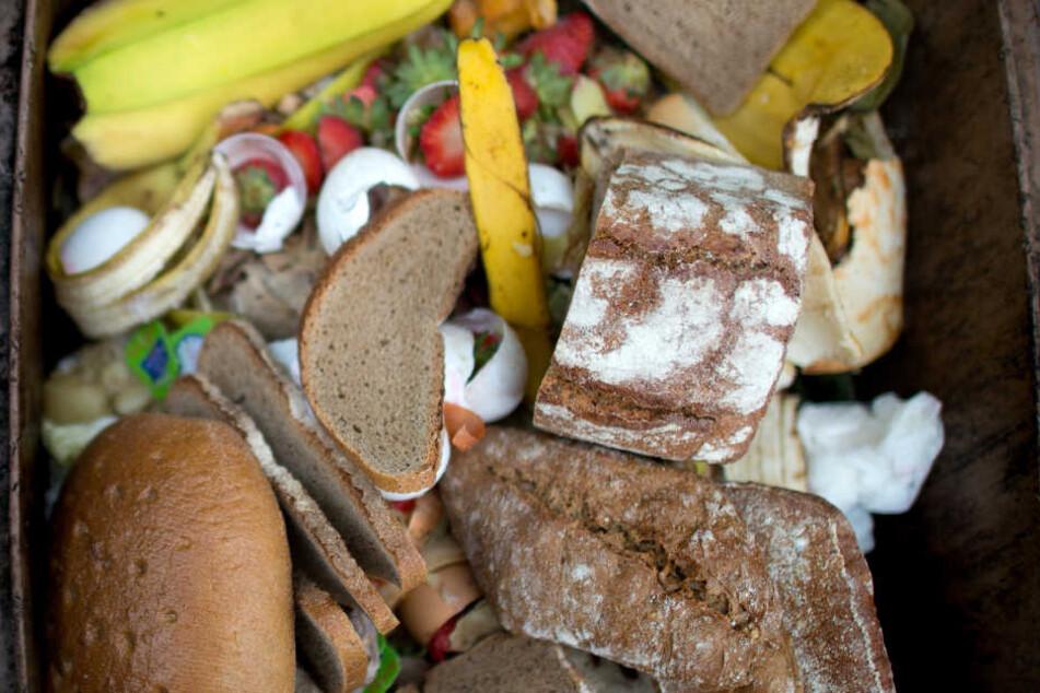 Gigantische Berge von noch tauglichem Essen landen täglich im Müll.