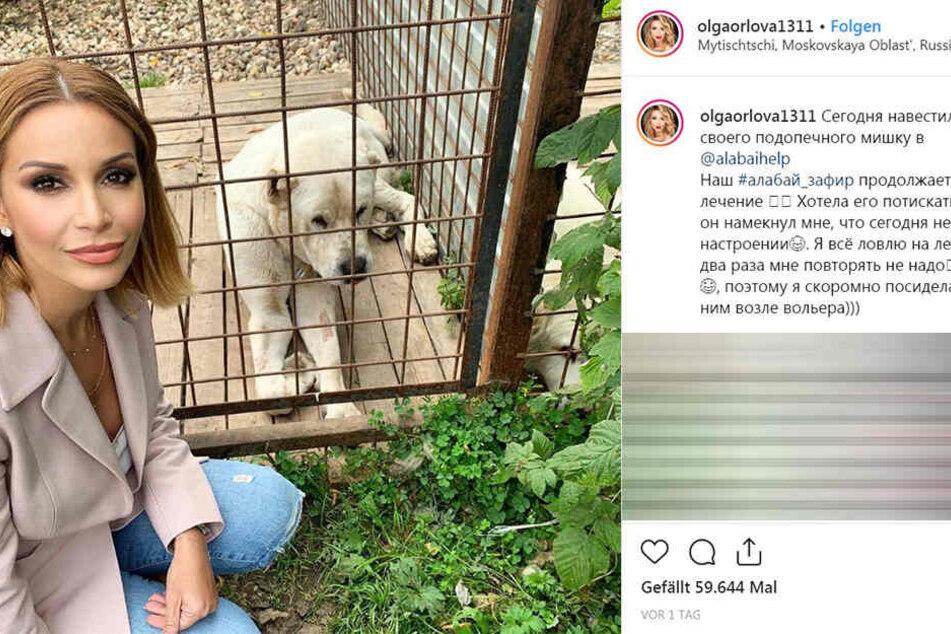 Olga Orlova besuchte den Hund kürzlich und postete ein Foto davon auf Instagram.