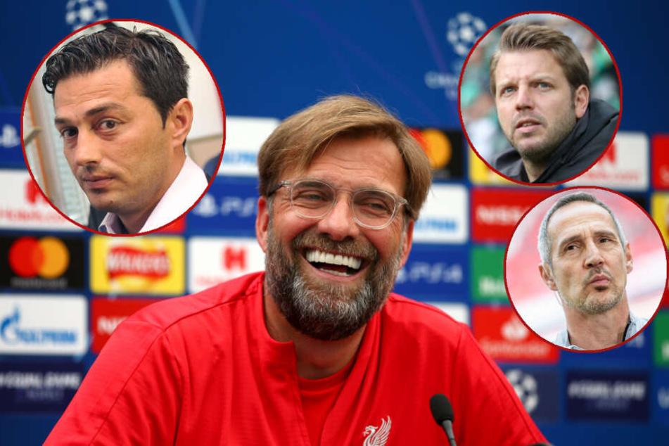 Covic (Hertha), Kohfeldt (Bremen) oder Hütter (Frankfurt)? Jürgen Klopp entscheidet über Marko Grujics sportliche Zukunft. (Bildmontage)