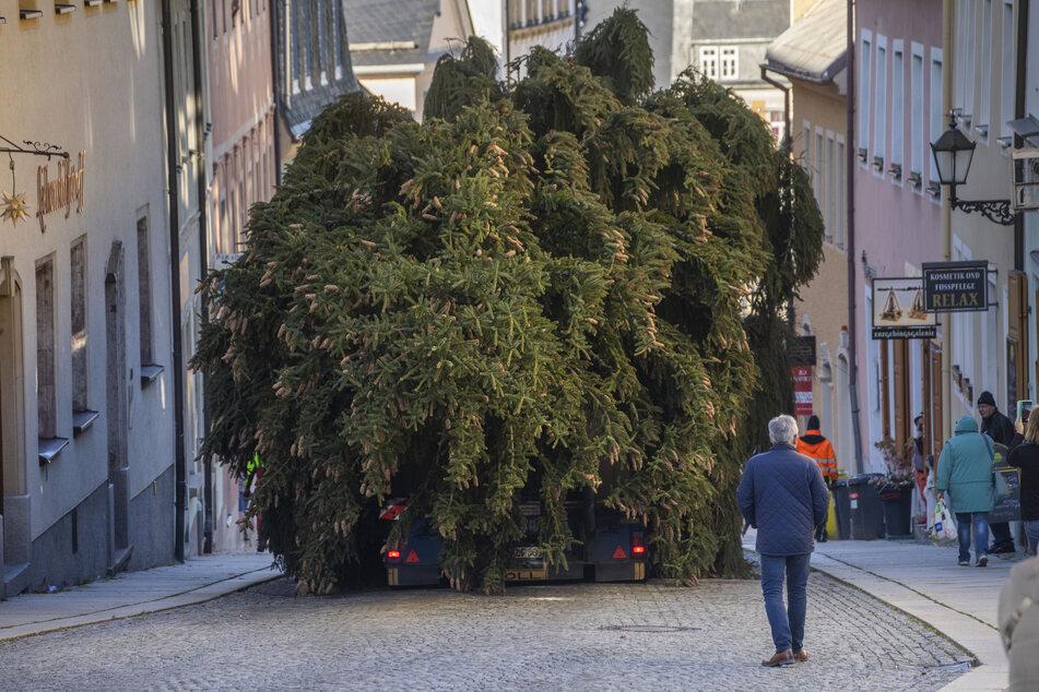 Erzgebirge: Hier fährt ein Weihnachtsbaum durch die Gassen