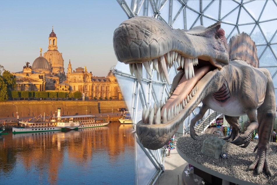 Und weiter geht der Spaß! Acht schöne Tipps für Euer Wochenende in Dresden