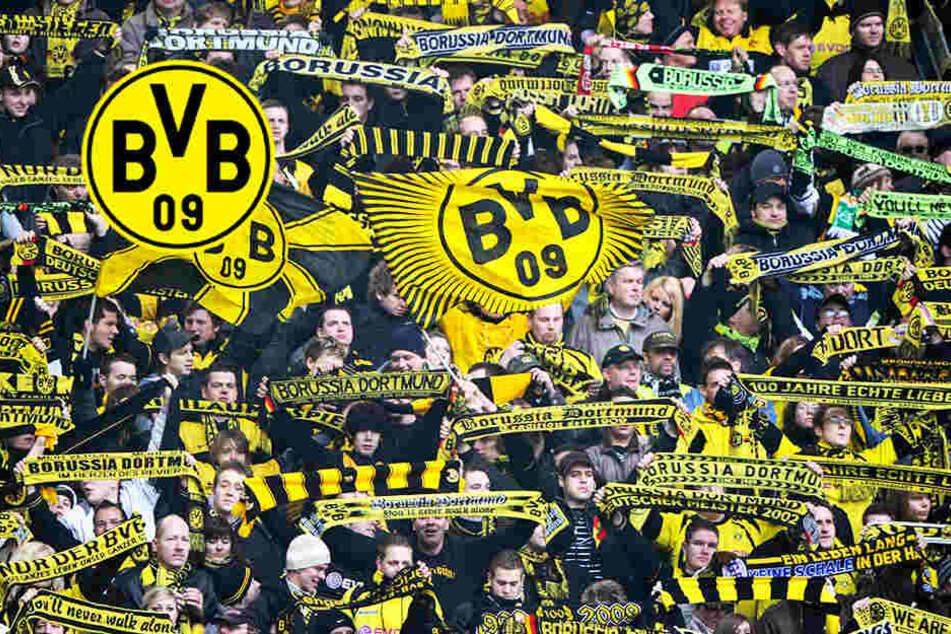 BVB kündigt 500 Fans die Dauerkarten! Doch Dortmund hat dafür einen triftigen Grund