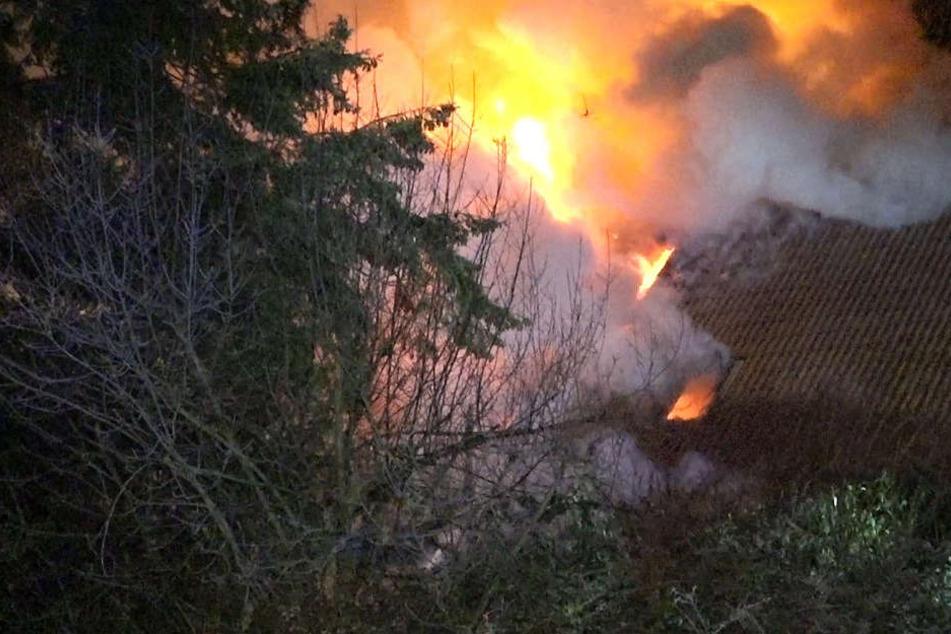 Wie das Foto zeigt, schlugen die Flammen meterhoch in den Himmel.