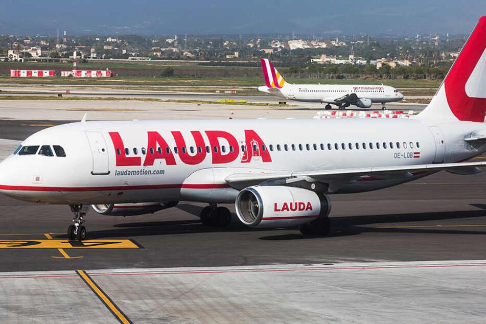 Laudamotion fliegt ab Juni ab Dresden nach Mallorca.