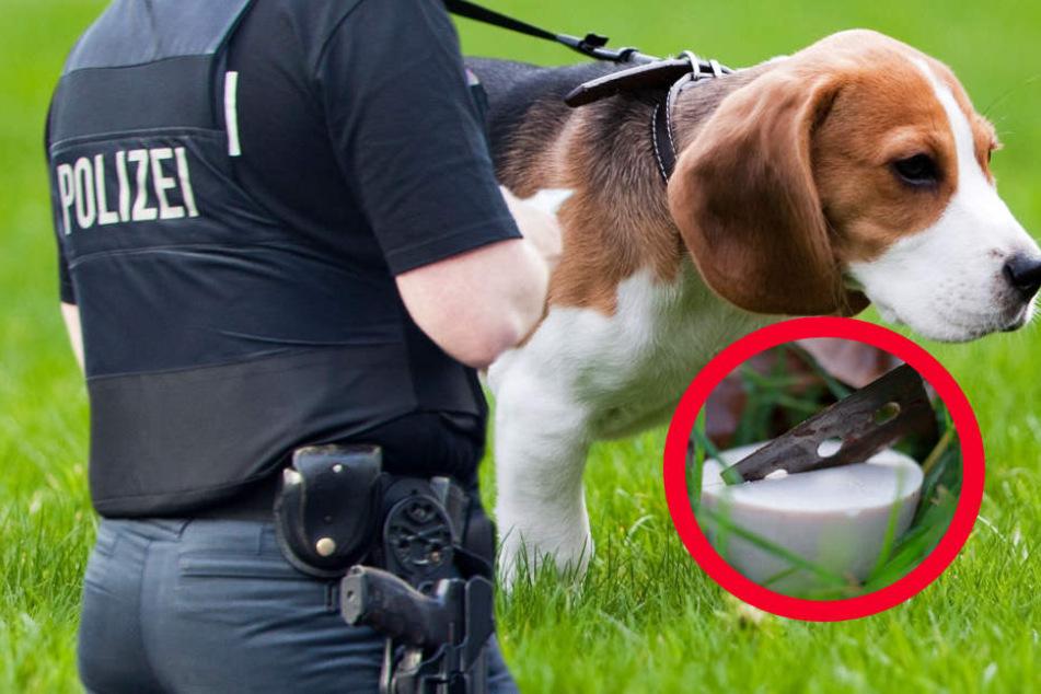 Hundehasser am Werk: Polizei warnt vor Leckerli mit Rasierklingen