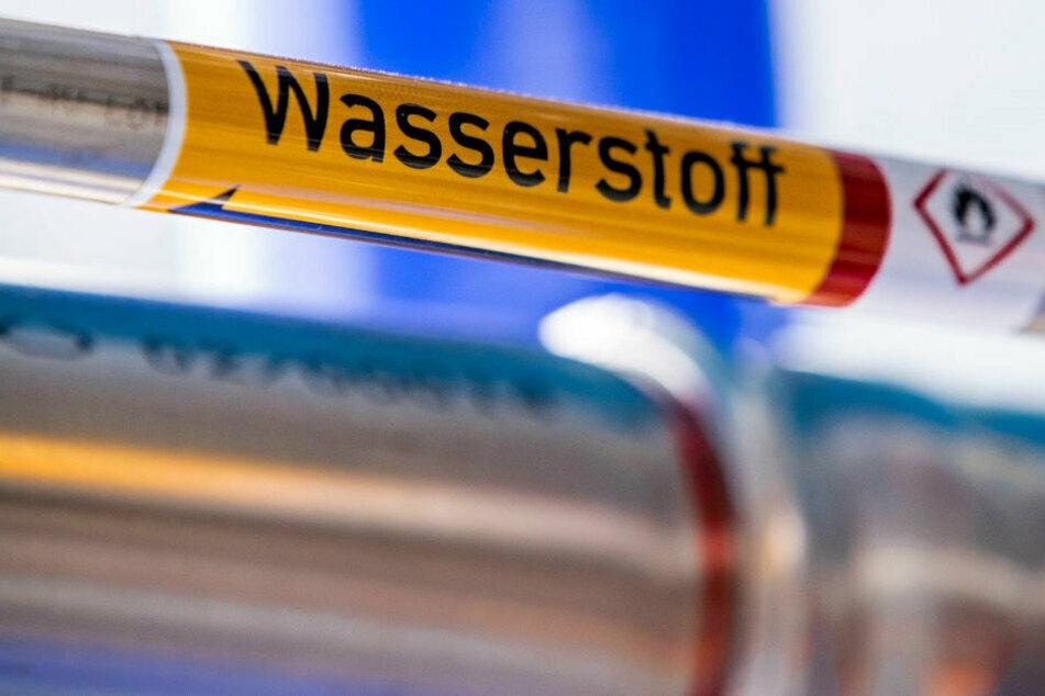 """Oberfranken als """"Reallabor"""" für Wasserstofftechnologie"""