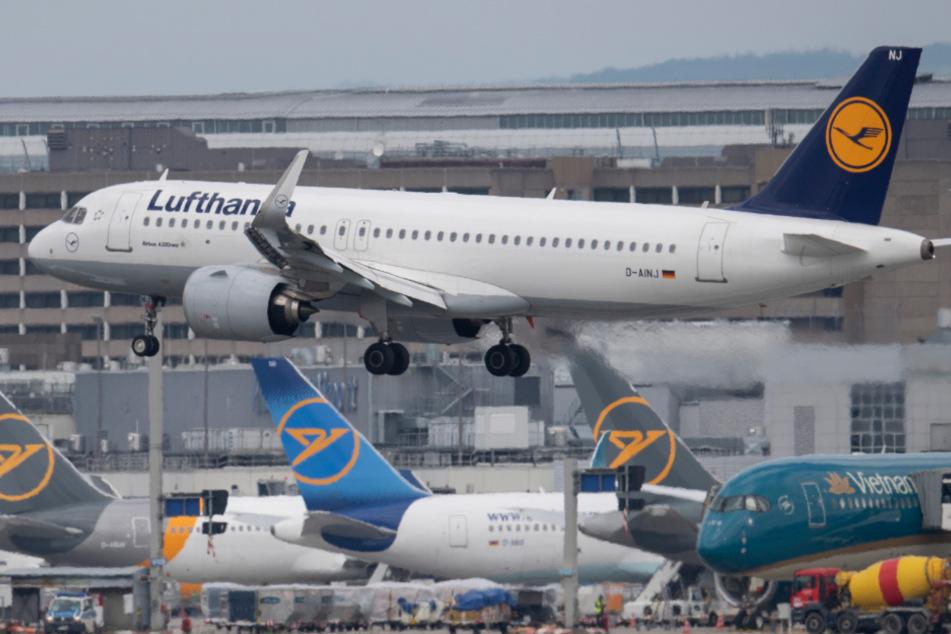 Das Flugzeug hob letzten Endes doch noch ab (Symbolbild).
