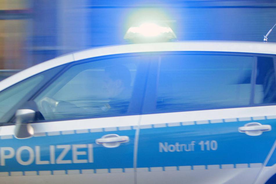Die Polizei schnappte am Sonnabend zwei Täter (20, 31), die einen Mann (46) in Oschatz zusammenschlugen