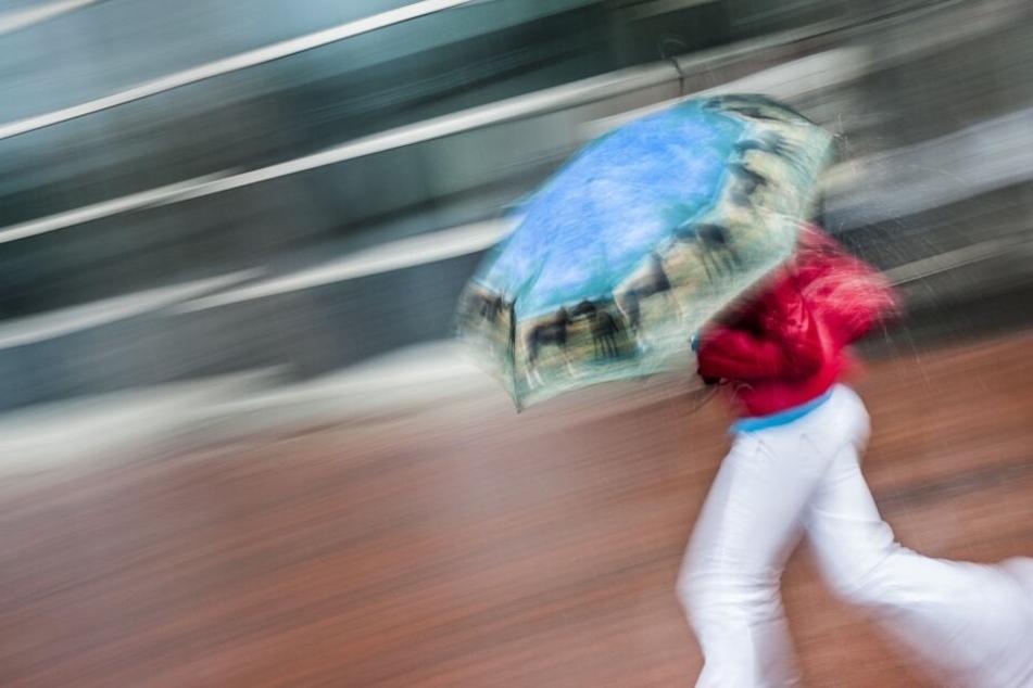 Wird in den nächsten Tagen definitiv gebraucht: Ein Regenschirm!