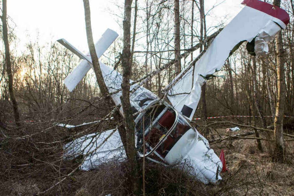 Die Maschine landete mitten in einem Waldgebiet.