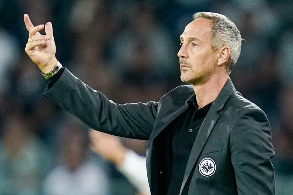 Adi Hütter kann gegen Werder Bremen wieder mit Dominik Kohr und wohl auch mit David Abraham planen.