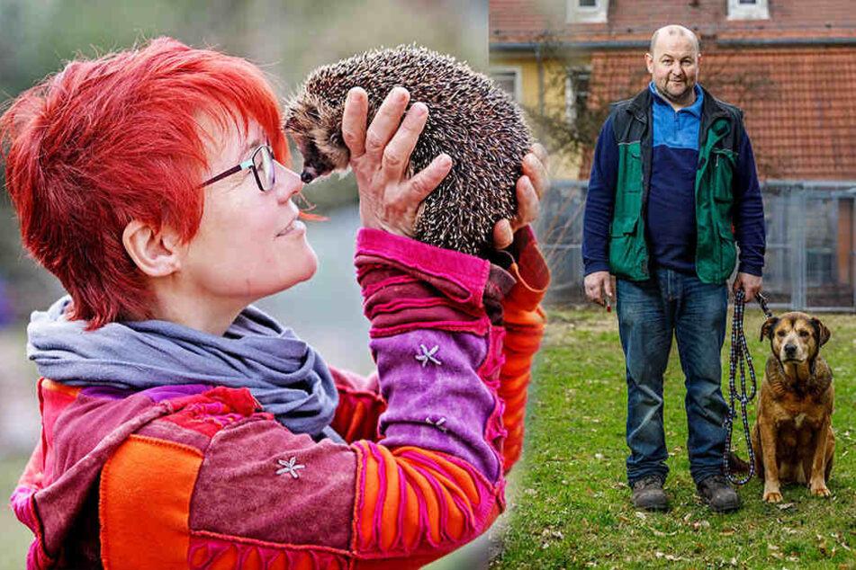Dank vielen freiwilligen Helfern wird Sachsens Tieren geholfen.