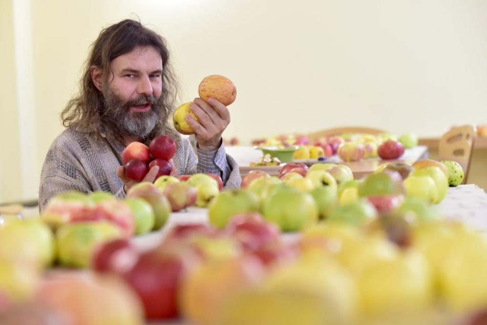 Obstbauer Reiner Amme (50) setzt sich für einen Bürgermarkt mit Obst aus den Chemnitzer Gärten ein.