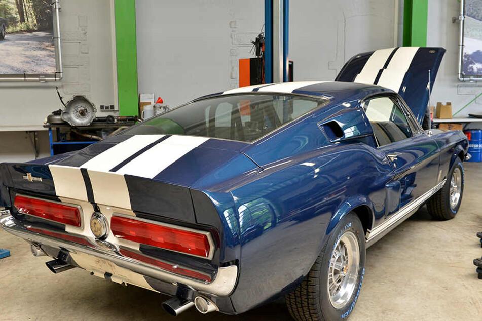 Ein seltenes Exemplar: der Ford Shelby Mustang GT500 aus dem Jahr 1967.