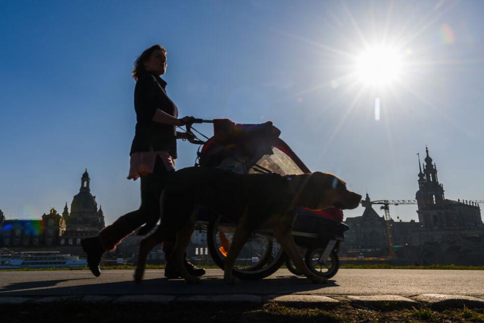 In Sachsen schien 2019 336 Stunden lang die Sonne.