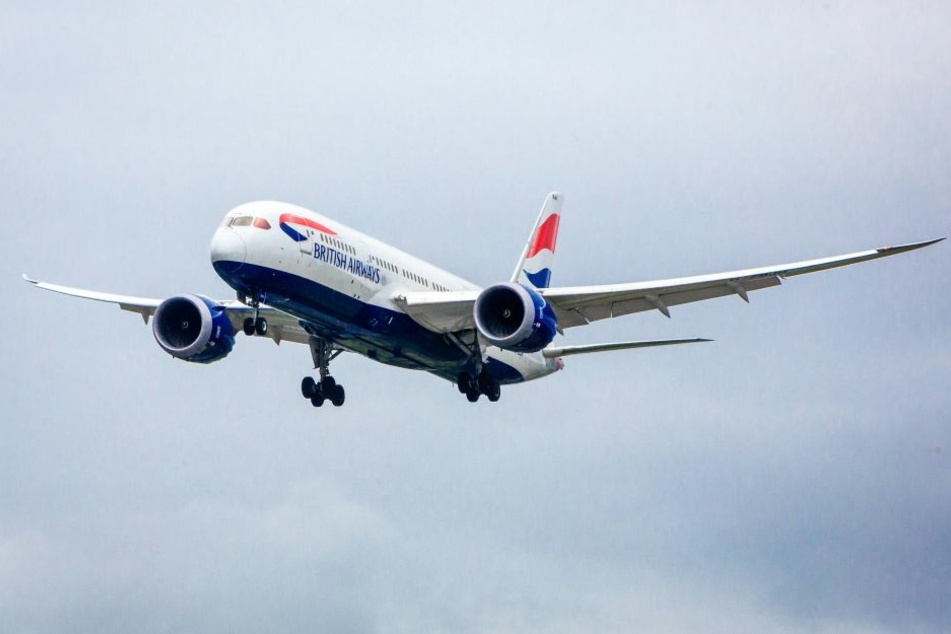 """Weil sich ein Vogel in einem """"Dreamliner"""" verirrt hatte, musste ein Flug abgesagt werden. (Symbolbild)"""