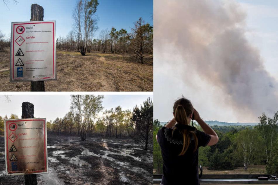 Vorher-Nacher-Bilder zeigen das Ausmaß der Zerstörung (l). Rechts wütet das Feuer auf einem Teil des ehemaligen Truppenübungsplatzes.