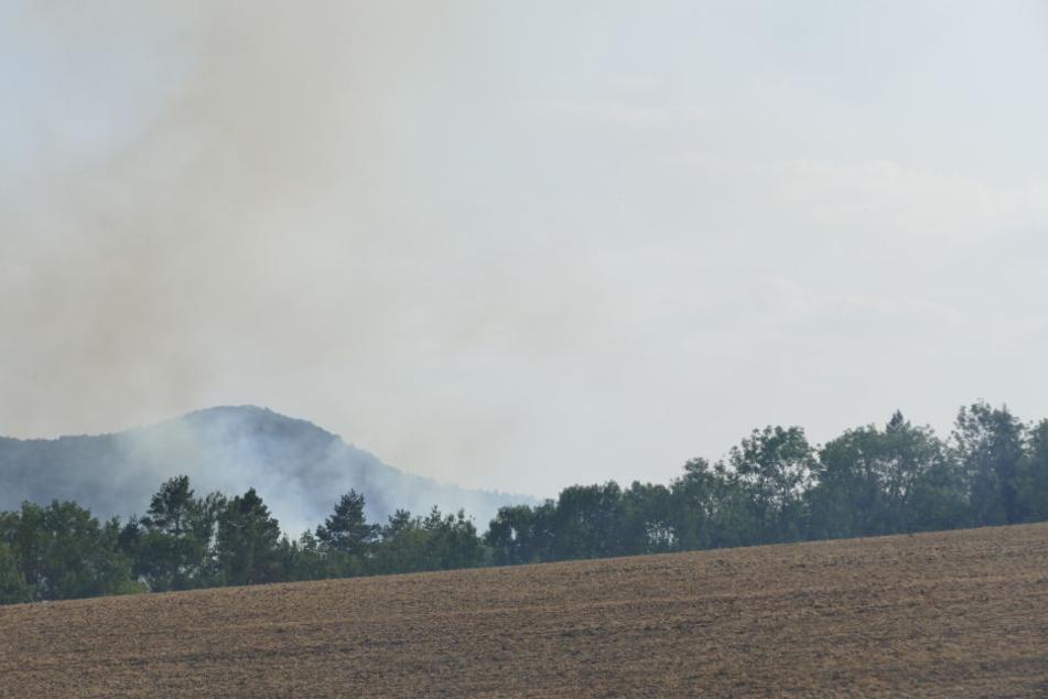 Auch aus der Ferne konnte man den Waldbrand beobachten.