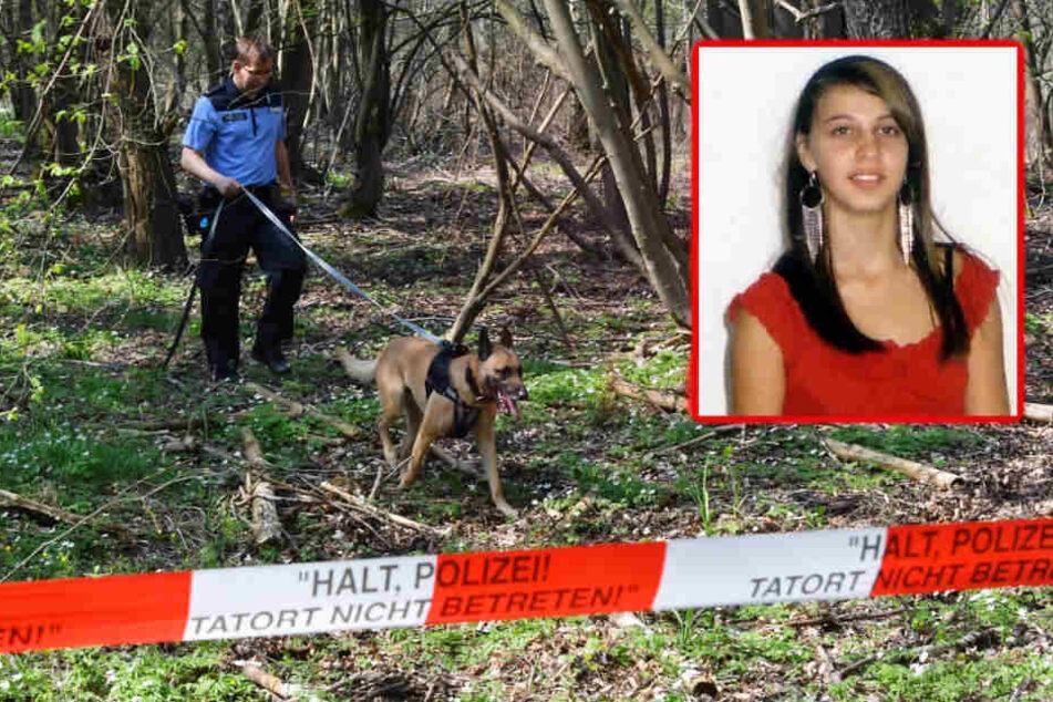 Mit einem Leichenspürhund sucht ein Polizeibeamter in einem Waldgebiet bei Brieselang nach Spuren der vermissten Georgine Krüger.
