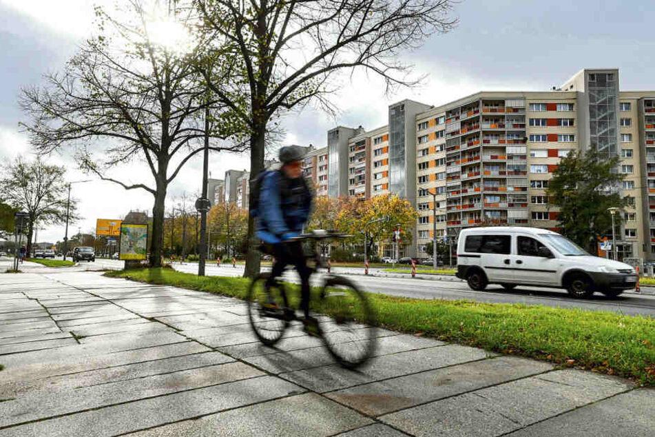 Radfahrer müssen sich aktuell den holprigen Weg mit Fußgängern teilen.