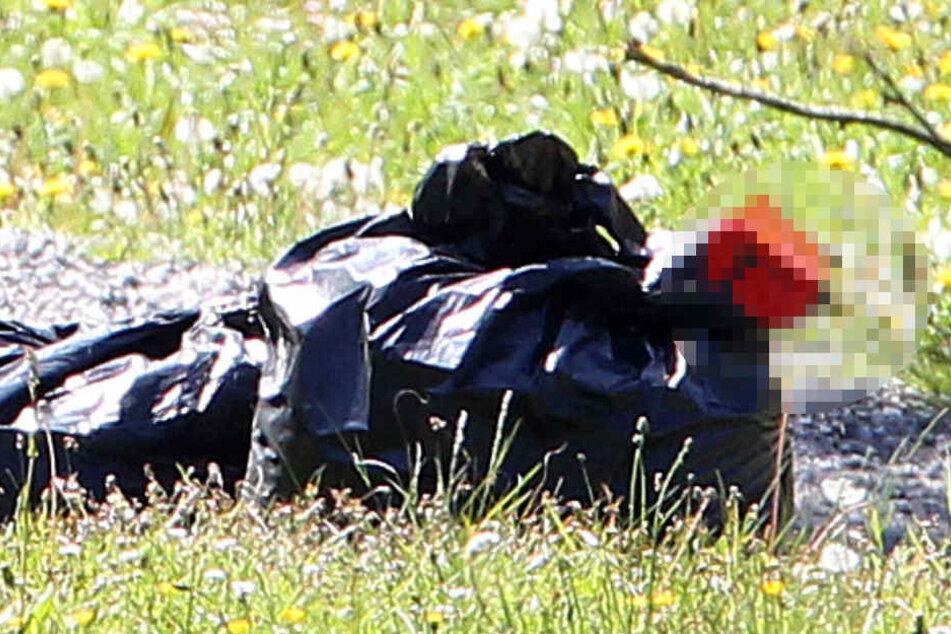 Passanten entdeckten in einem Plastikbeutel Körperteile eines toten Schafs.