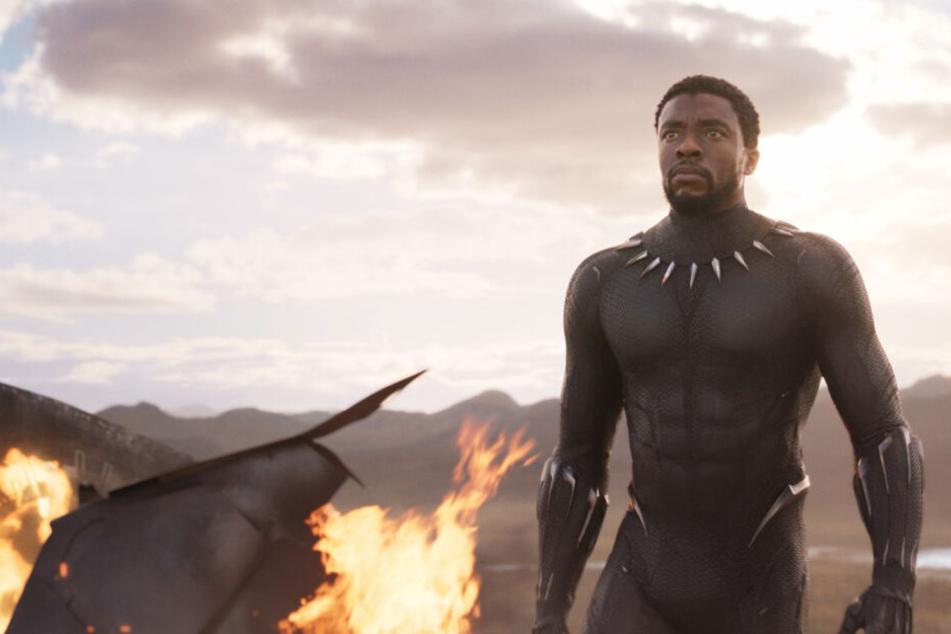 Über die kuriosen Einträge der USDA wäre sicher auch Black Panther selbst verwirrt.
