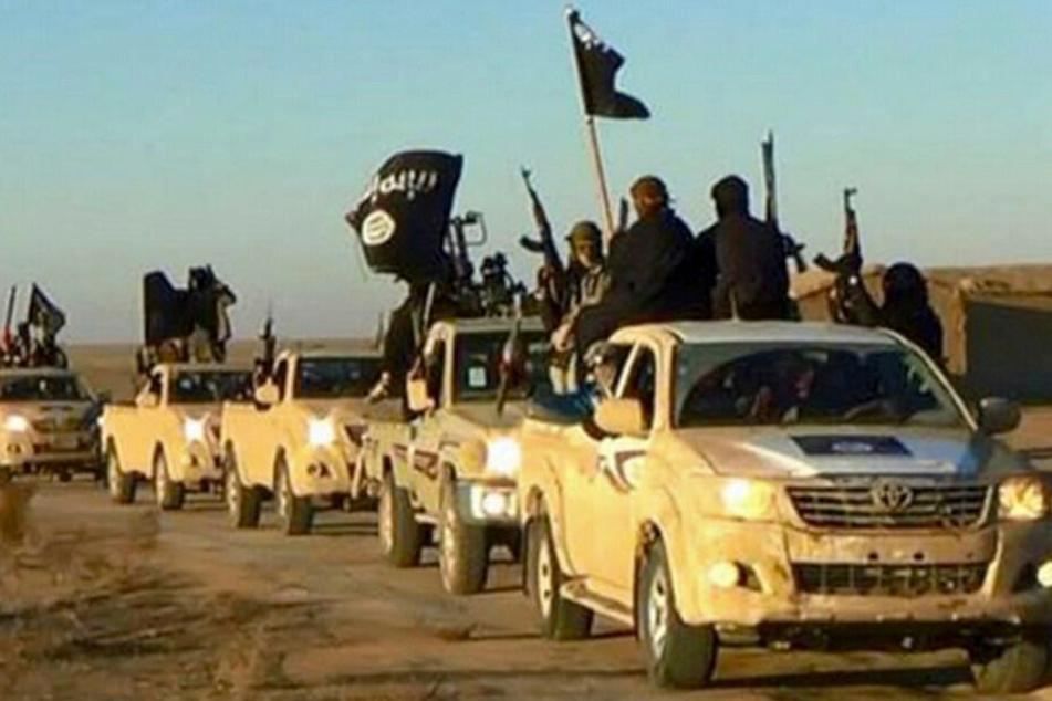Ein Fahrzeugkonvoi mit Mitgliedern des IS auf dem Weg in den Irak. (Archivbild, 2017)
