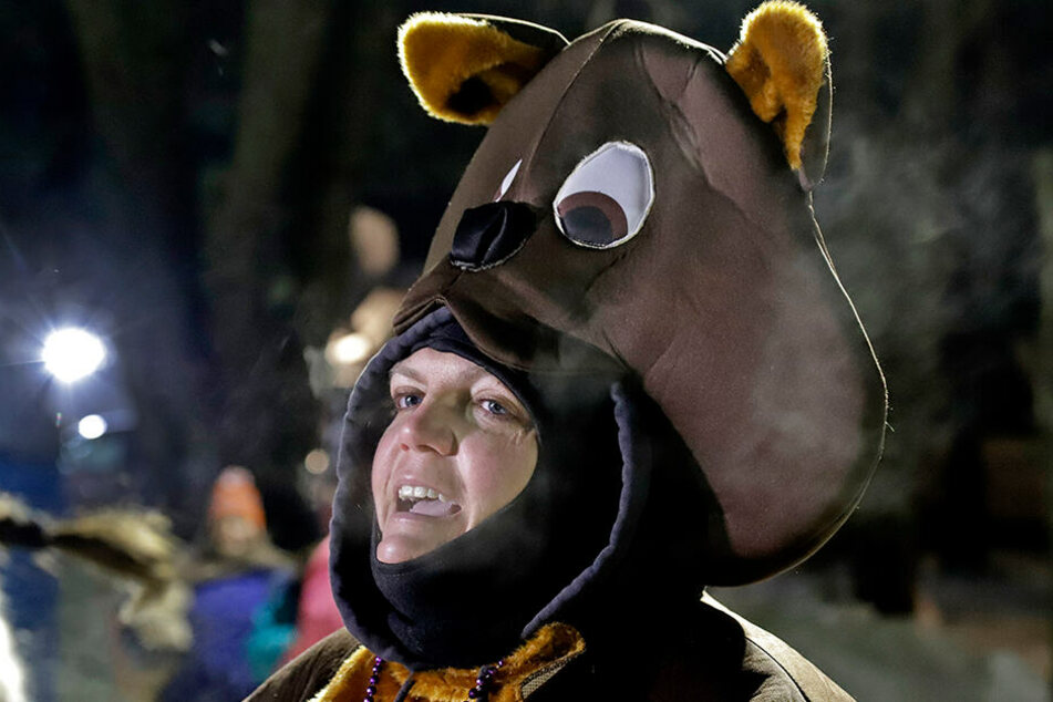 Katie Wolf aus New Cumberland trägt zum 133. Murmeltiertag ein Murmeltierkostüm.