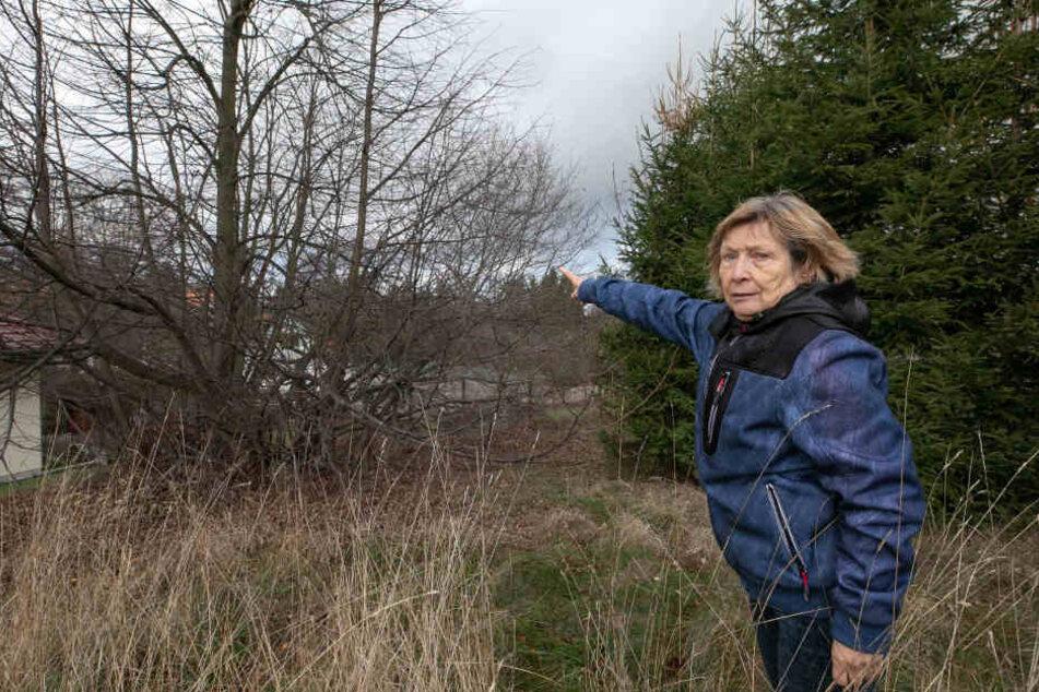 Ilse H. (72) zeigt, wo der Modellflieger einst im Busch landete. Der Fall beschäftigte auch die Justiz.