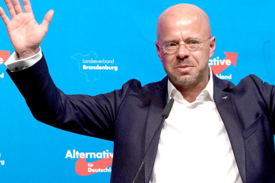 """""""AfD-Sieg bald bittere Realität"""": Umfrage-Hammer vor Brandenburg-Wahl"""