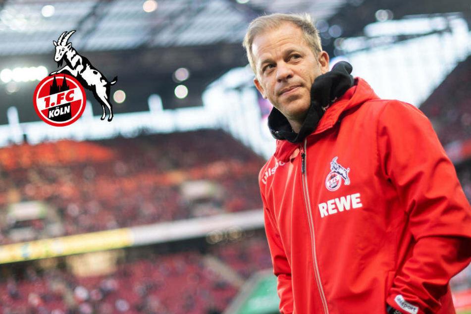 Offiziell: 1. FC Köln setzt Trainer Markus Anfang vor die Tür