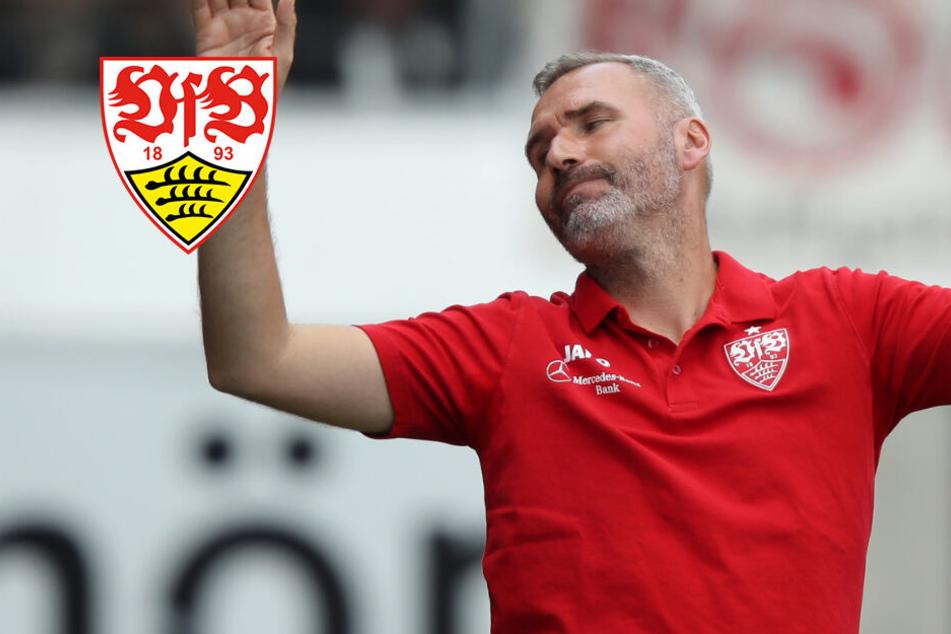 VfB-Trainer Tim Walter hat keinen Bock über Holger Badstuber zu reden