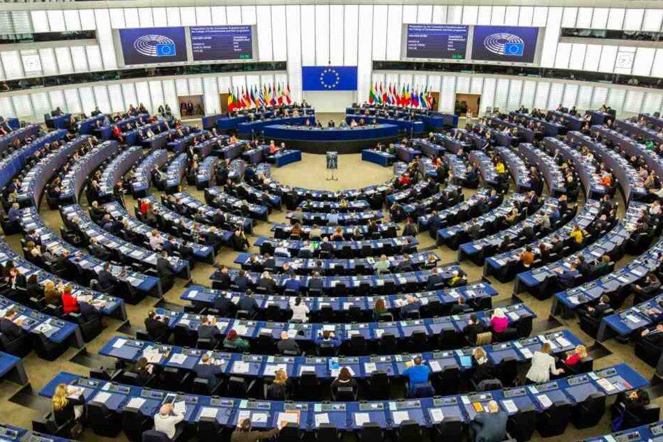 Das Europäische Parlament.