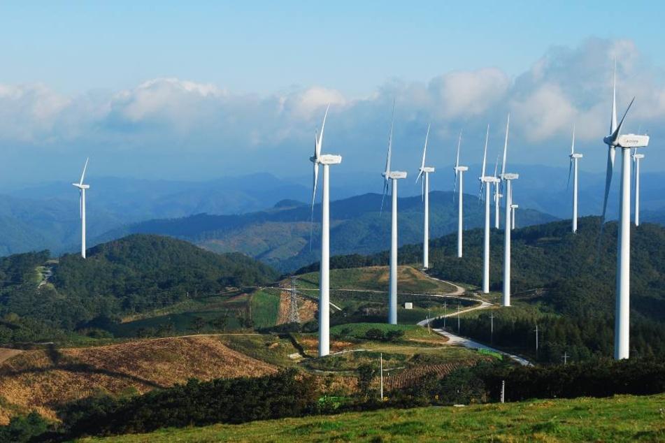 Die Landesregierung will ein Prozent der Landesfläche für Windkraftanlagen reservieren. (Symbolbild)