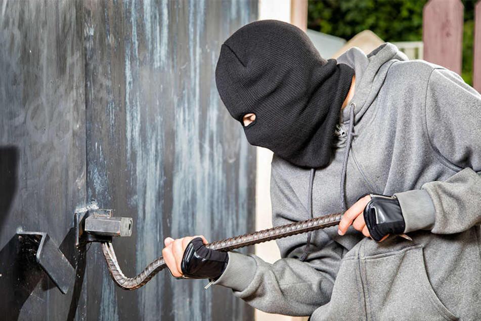 Über 70 mal knackten Einbrecher Garagen in der Region Zittau.