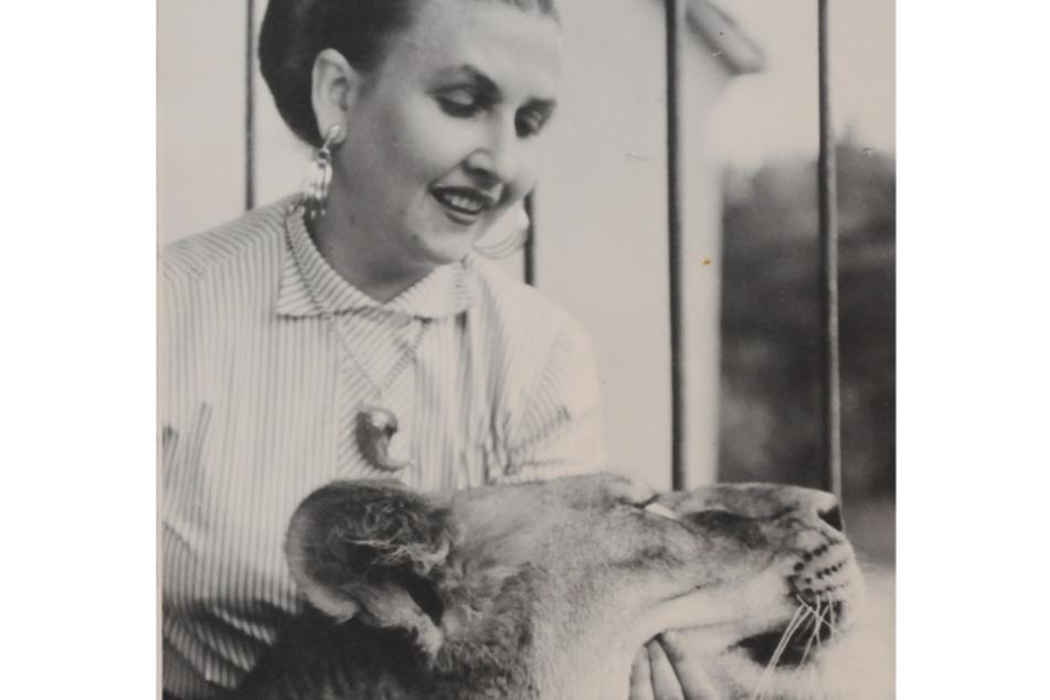 Sonja Müller-Milano Ende der 50er-Jahre mit ihrer Lieblingslöwin Roja, die sogar in einem DEFA-Märchen mitspielte.