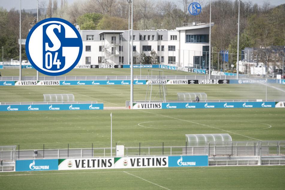 Corona-Alarm auf Schalke: Positive Fälle, Trainingspause! Quarantäne für Bundesligisten?