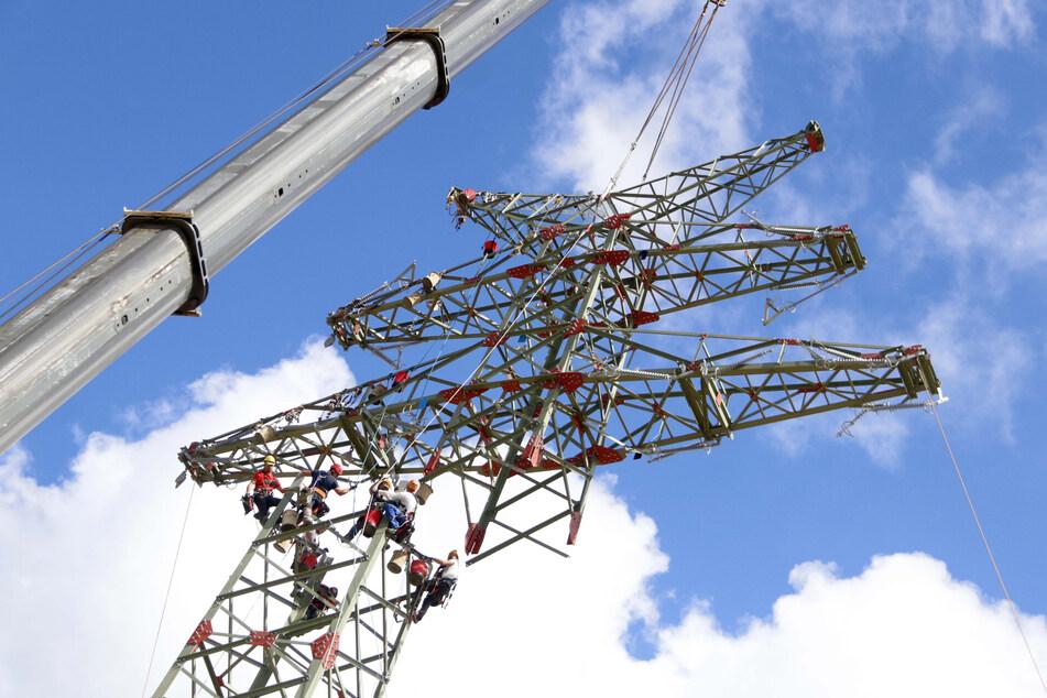 Beim Stromleitungsausbau hinkt Deutschland laut Wendland hinterher. (Symbolbild)