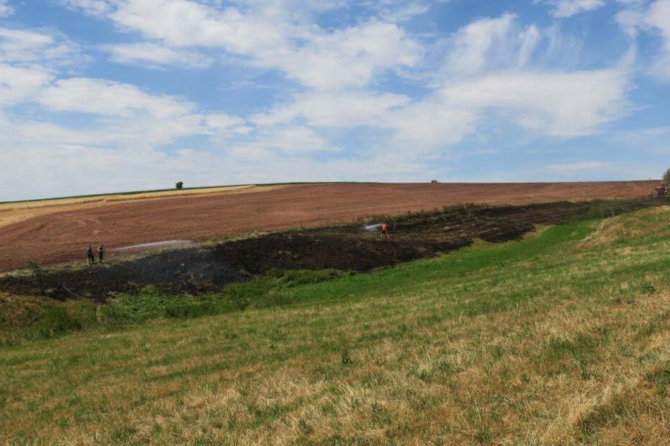 Insgesamt standen etwa 1000 Quadratmeter in Flammen.