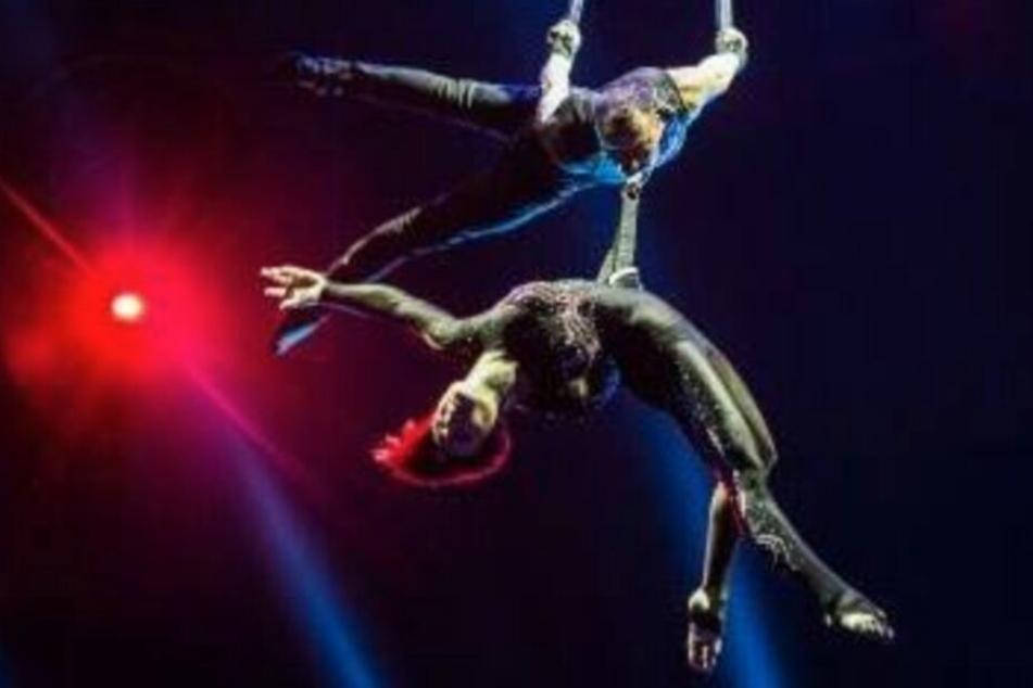 Menschliches Versagen: Artist stürzt bei Zirkus-Show sechs Meter in die Tiefe