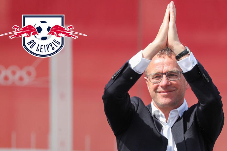 Paukenschlag bei RB Leipzig! Ralf Rangnick verlässt die Sachsen