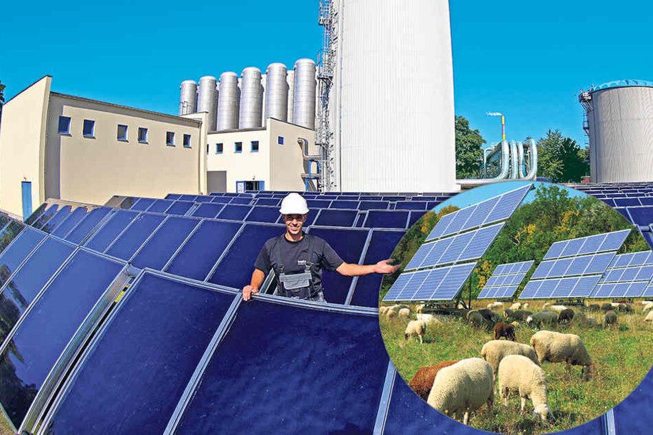 """""""eins""""-Obermonteur Christoph Kahle (27) an seinem Solarfeld-Arbeitsplatz. In der Mitte ist neue Warmwasser-Speicher zu sehen."""