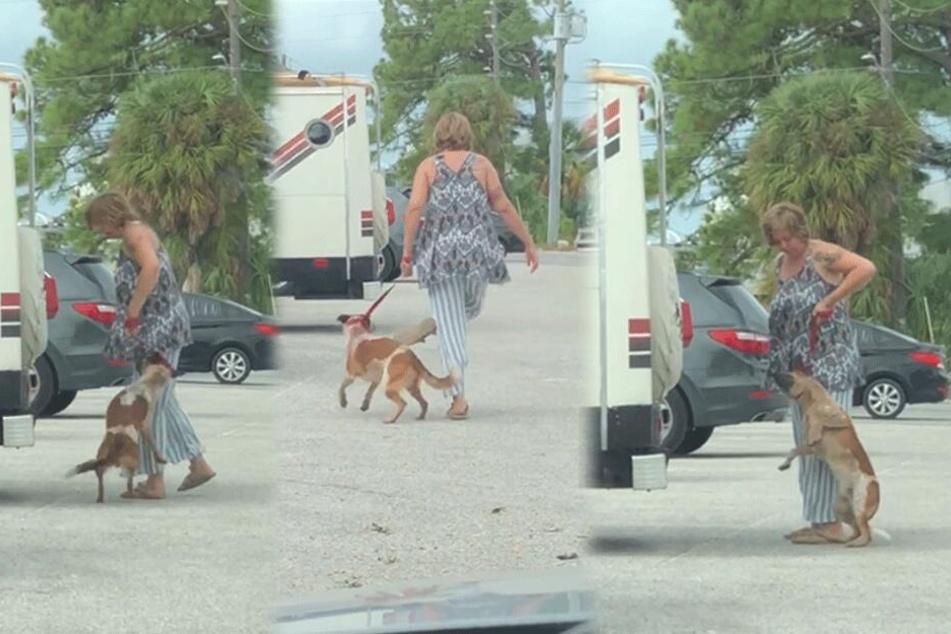 Frau tritt und würgt ihren Hund: Schock-Video geht viral